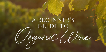 A Beginner's Guide to Organic Wine