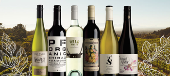 The Top 6 Organic Wines for the Festive Season